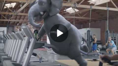 Wonderful Pistachios Super Bowl Commercial 2017 Elephant Ernie Gets Physical