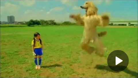 Creepy japanese calbee consome panchi dog commercials