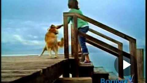 Boniva Commercial
