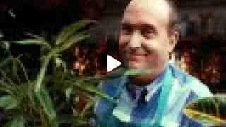 Partnership for a Drug-Free America 'Marijuana' PSA - (1992)