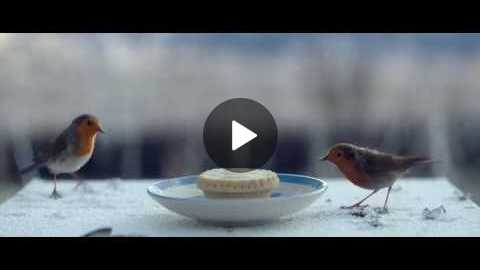 Waitrose Christmas TV ad 2016 HomeForChristmas